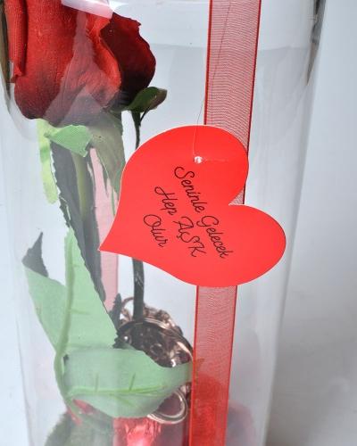 Aşık Kupalar Sevgililer Günü Hediyesi 4