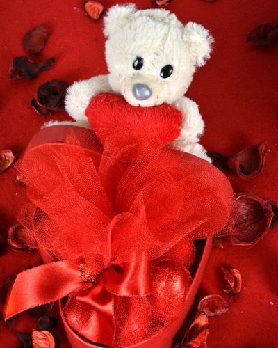 Sevimli Kutucuk Sevgililer Günü Hediyesi 2