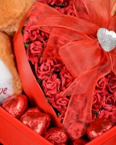 Peluş Ayıcık Sevgililer Günü Hediyesi  2